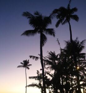 マウイ島にて筆者撮影